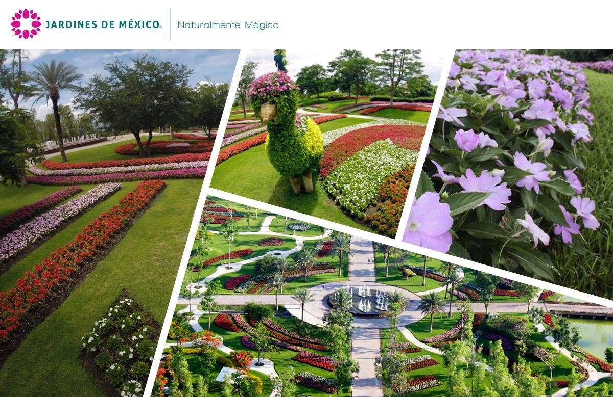Jardines de mexico for Jardines mexico